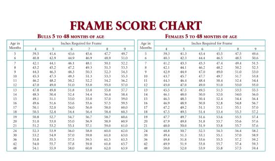 Cow Frame Chart